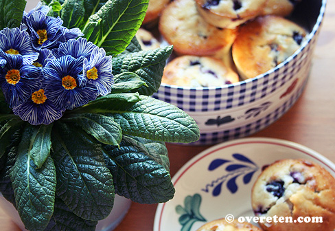 Blauwe bessen muffins (3)